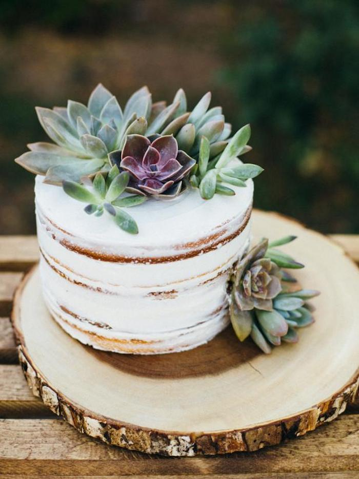 Succulents on top of the wedding cake.
