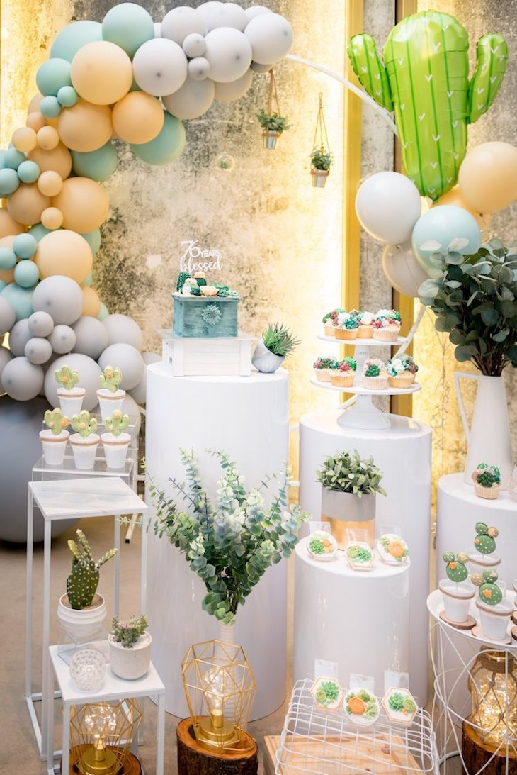 Cacti and succulents in party decoration
